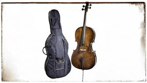 Stentor Cello